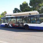 Publicidad autobuses, Publicidad exterior, concierto de Alicante, el drogas